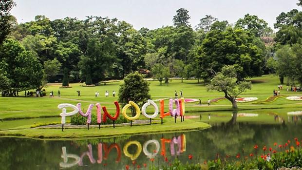 Une ville birmane devient un centre floral de l'ASEAN hinh anh 1