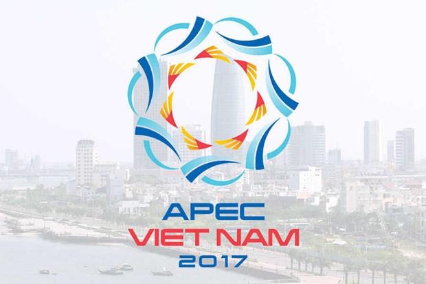 L'APEC assume bien le role de liaison economique de l'Asie-Pacifique hinh anh 1