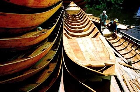 Les crues, un don de la nature pour le delta du Mekong hinh anh 2