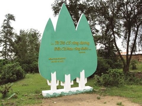 Tra Co et le cap Sa Vi, l'extremite Nord-Est du Vietnam hinh anh 1