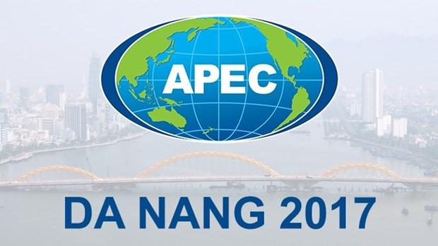 APEC : Nouvelle vision et position du Vietnam hinh anh 1