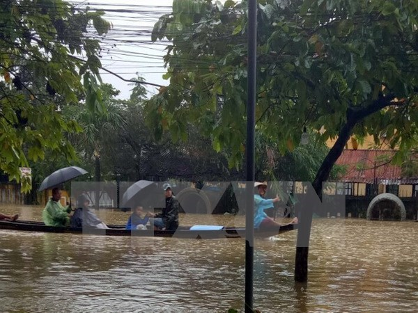 La Russie et le Japon aident le Vietnam a remedier aux consequences du typhon Damrey hinh anh 1