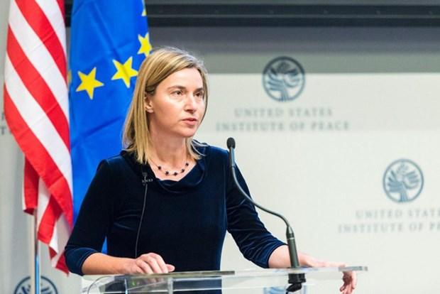 L'UE enverra une equipe au Vietnam pour evaluer les degats du typhon Damrey hinh anh 1