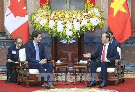 Le president Tran Dai Quang recoit le Premier ministre canadien hinh anh 1