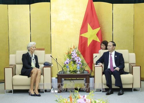 APEC 2017 : le chef de l'Etat recoit la directrice generale du FMI hinh anh 1