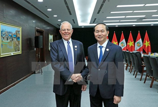 APEC 2017: le Vietnam veut elargir sa cooperation avec le Perou hinh anh 1