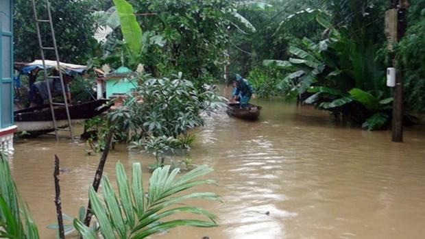 Aides etrangeres pour le Vietnam a remedier aux consequences du typhon Damrey hinh anh 1