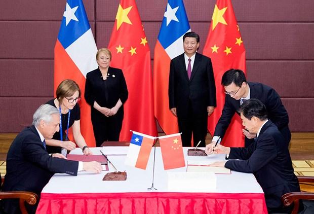 APEC 2017 : La Chine et le Chili modernisent leur accord de libre-echange hinh anh 1