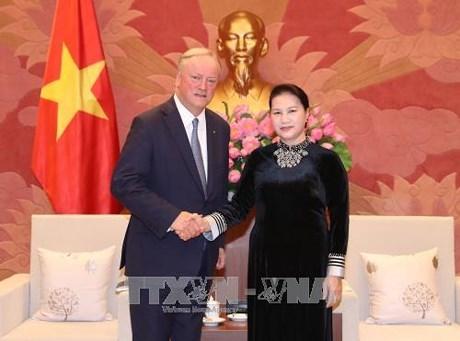 Des dirigeants vietnamiens recoivent le president du du groupe d'audit mondial Deloitte hinh anh 1