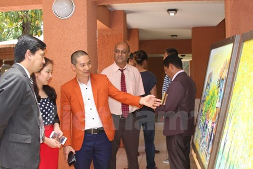 Presentation de la culture vietnamienne en Afrique du Sud hinh anh 1