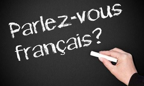 Efforts conjugues pour favoriser l'enseignement du/en francais hinh anh 2