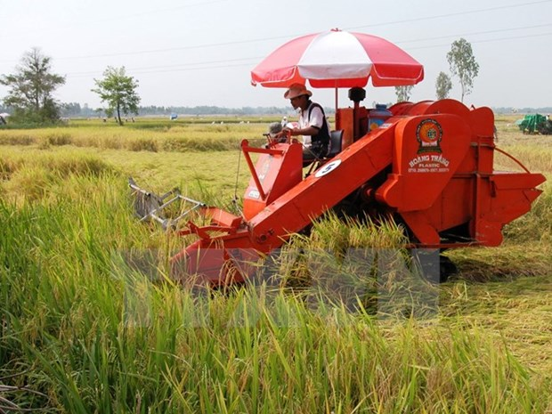 Hautes technologies – tendance ineluctable de l'agriculture moderne hinh anh 3
