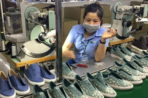 L'industrie du cuir et de la chaussure developpe ses exportations vers l'UE hinh anh 1