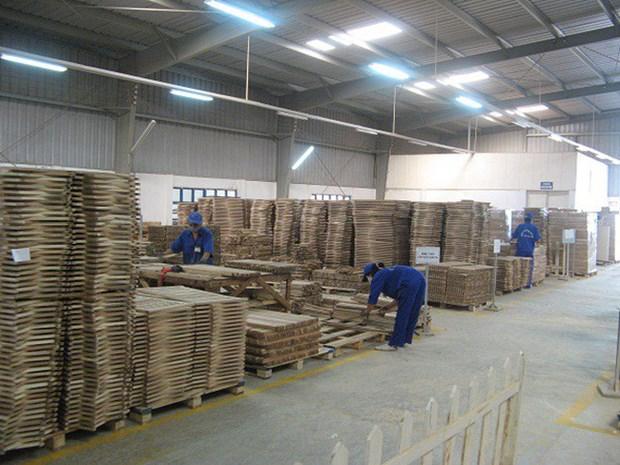 Les exportations nationales de bois atteindront certainement 10 milliards de dollars en 2020 hinh anh 1