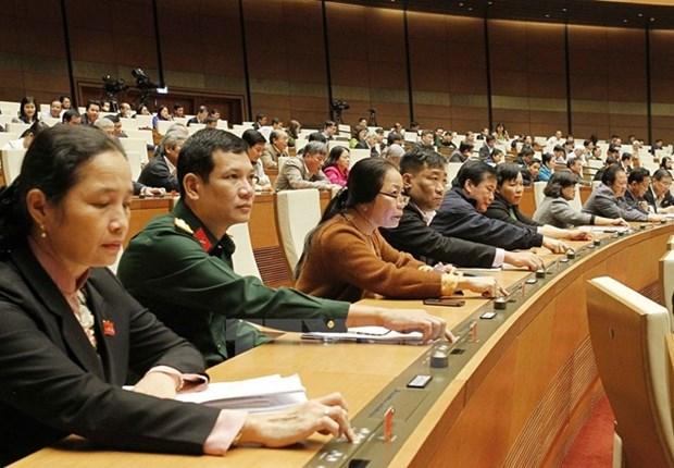 L'Assemblee nationale adopte deux lois et une resolution hinh anh 1