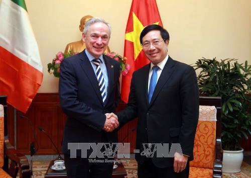 Le vice-PM Pham Binh Minh recoit le ministre irlandais de l'Education et des Competences hinh anh 1