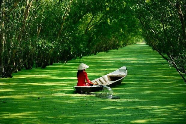 Plus de 700 milliards de dongs pour la zone touristique de Tra Su de la province d'An Giang hinh anh 1
