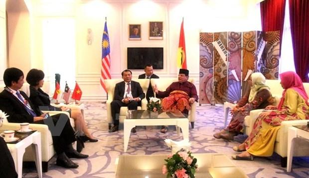 Une delegation du Parti au congres de l'UMNO de Malaisie hinh anh 1