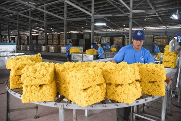 Les exportations nationales du caoutchouc franchissent la barre des 2 milliards de dollars hinh anh 1