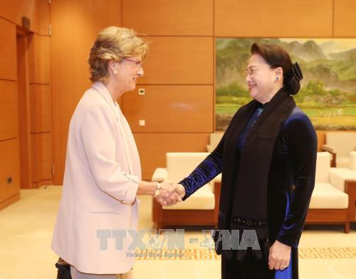 La presidente de l'AN vietnamienne recoit l'ambassadrice d'Espagne hinh anh 1