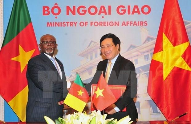 Le Cameroun veut elargir la cooperation avec le Vietnam hinh anh 1