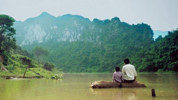 2017 : une annee pleine pour le cinema vietnamien hinh anh 2
