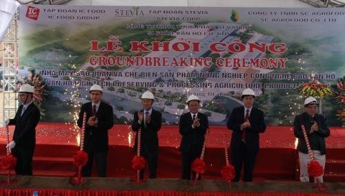 Son La: construction d'une usine de transformation de produits agricoles pour l'exportation hinh anh 1