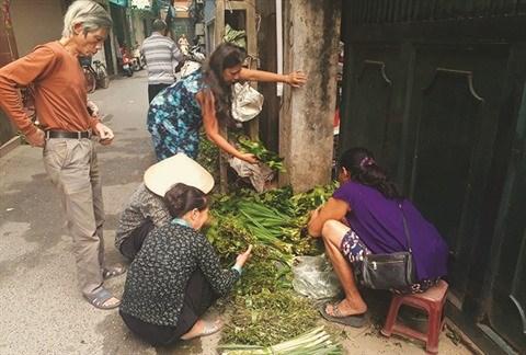Le dernier jardin medicinal de Dai Yen hinh anh 2
