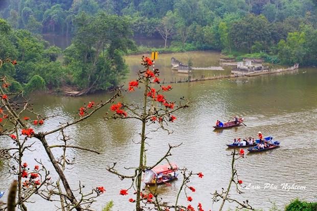 Le kapokier, la beaute culturelle de la campagne du Nord Vietnam hinh anh 3