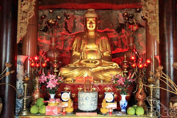 Decouvrir la beaute de Do Son a Hai Phong hinh anh 3