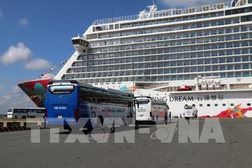 Da Nang valorise ses potentiels de tourisme de croisiere hinh anh 1