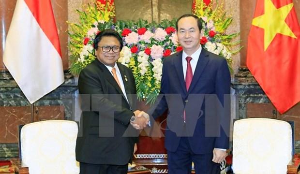 Vietnam et Indonesie doivent renforcer leur cooperation en tous domaines hinh anh 2