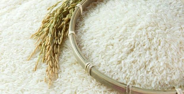 Le Vietnam remporte une adjudication d'exportation de 141.000 tonnes de riz en Indonesie hinh anh 1