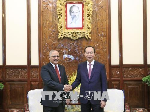 Le president Tran Dai Quang recoit l'ambassadeur egyptien hinh anh 1