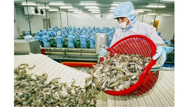 L'UE devient le premier importateur de crevettes vietnamiennes hinh anh 1