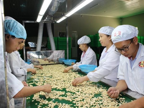 Janvier: exportations de plus de 3 mlds de dollars des produits agro-sylvico-aquatiques hinh anh 1