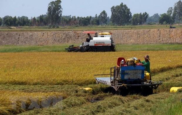 Le delta du Mekong cherche a transformer les defis agricoles en opportunites hinh anh 1