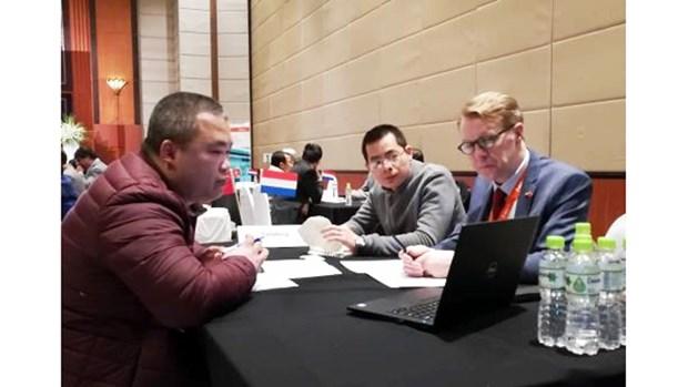 Les entreprises neerlandaises cherchent des opportunites d'affaires au Vietnam hinh anh 1