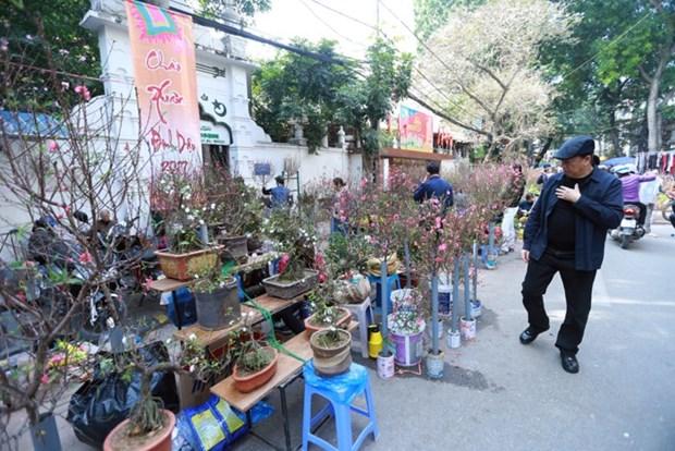 Hang Luoc, marche aux fleurs du printemps hinh anh 1