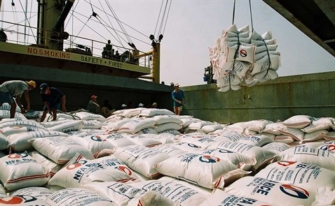 Les exportations nationales de riz atteindront 6 millions de tonnes en 2018 hinh anh 1