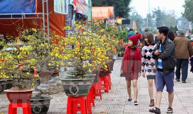 Des etrangers enthousiastes de vivre le Tet au Vietnam hinh anh 1