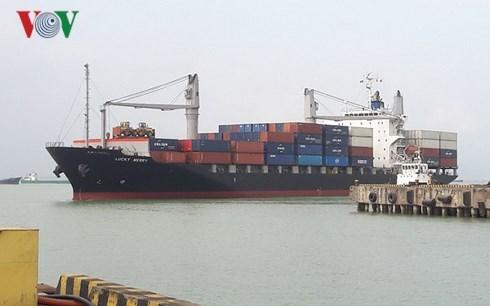 Le port de Da Nang accueille les premiers cargos de l'annee du Chien hinh anh 1