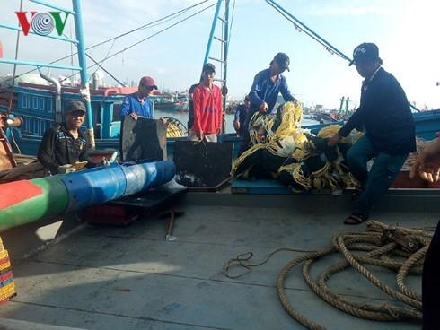 Khanh Hoa : premiere viree vers l'archipel de Truong Sa apres le Tet hinh anh 1