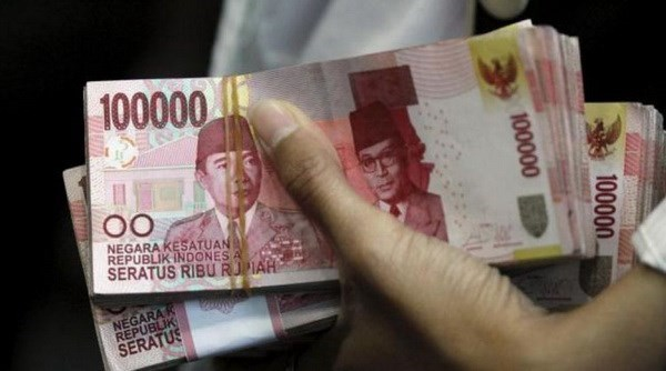 L'Indonesie sera le premier pays asiatique a vendre des obligations vertes hinh anh 1