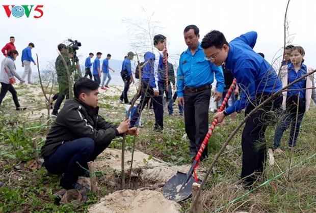 Planter des arbres pour proteger l'environnement hinh anh 1