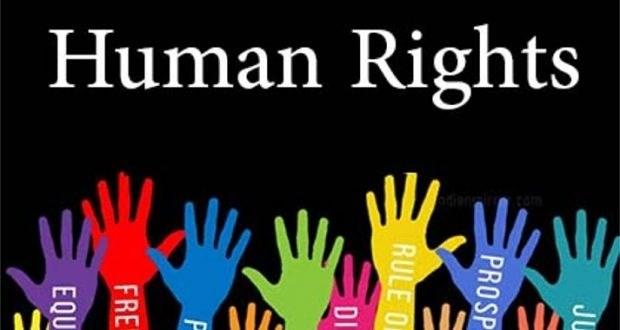 Renforcer le travail de promotion et de garantie des droits de l'homme dans tous les domaines hinh anh 1
