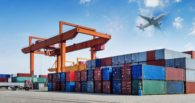La valeur d'import-export des marchandises en hausse de 37,2% hinh anh 1