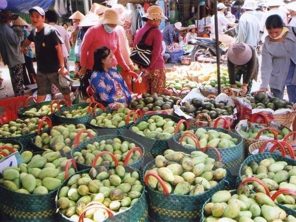 Bond des exportations nationales de fruits et legumes en deux premiers mois de 2018 hinh anh 1
