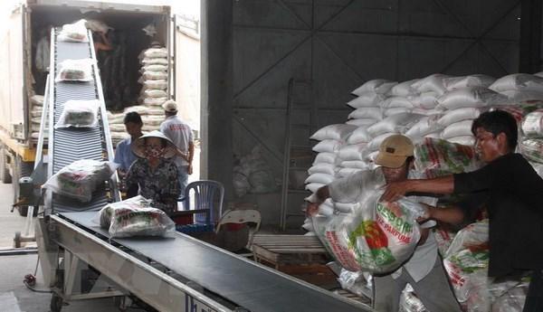 Le Vietnam pourrait exporter 6,5 millions de tonnes de riz en 2018 hinh anh 1