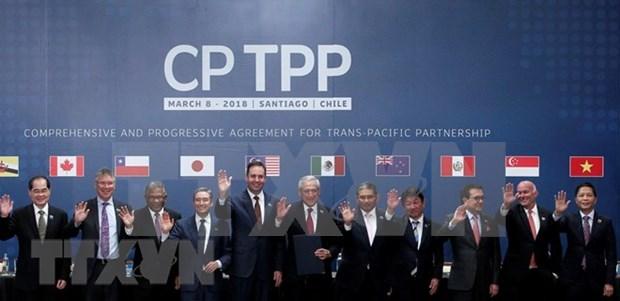 Pour mieux profiter de l'Accord du Partenariat transpacifique global et progressiste (CPTPP) hinh anh 1